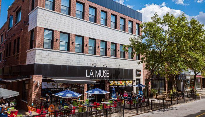 LaMuse-0017